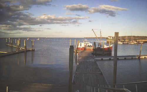 The docks are finally in the water down at the public landing! - Rockland Maine