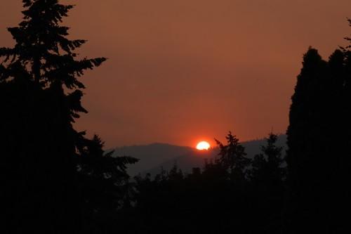 sunset fire forestfire iphotooriginal