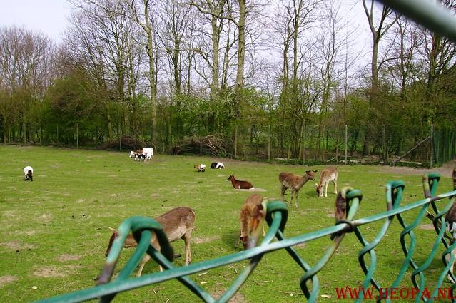 7 E Zemansloop 19-04-2008 40 KM (36)
