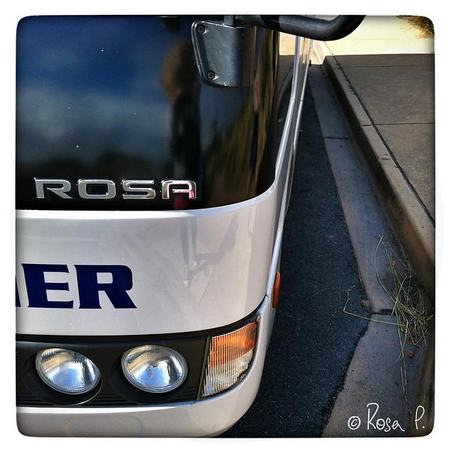 Australia - Bus