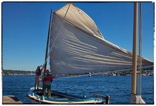 Clear Sails