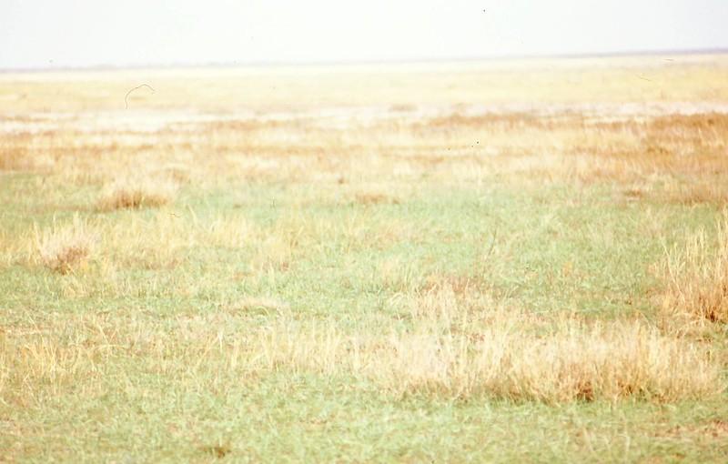 Uralsk2001-0017