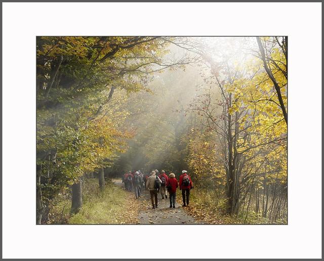 Herbstwanderung (autumn hiking)