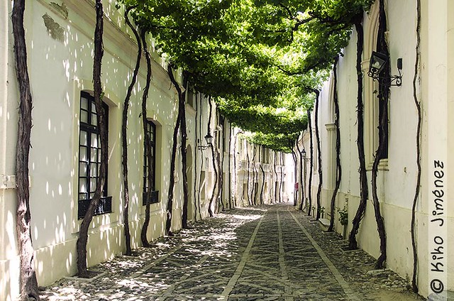 Ciegos street, in Jerez de la Frontera, Spain. One of the most beautiful streets in the world.