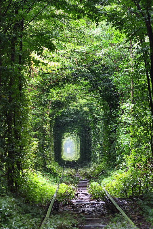Tunnel of love