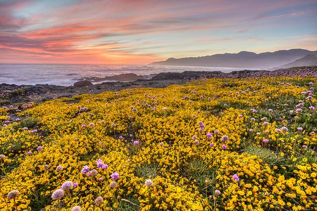 King Range National Conservation Area