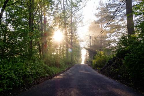 road sunrise countryside connecticut newengland ct lane ridgefield fairfieldcounty farrarlane sonydscrx100