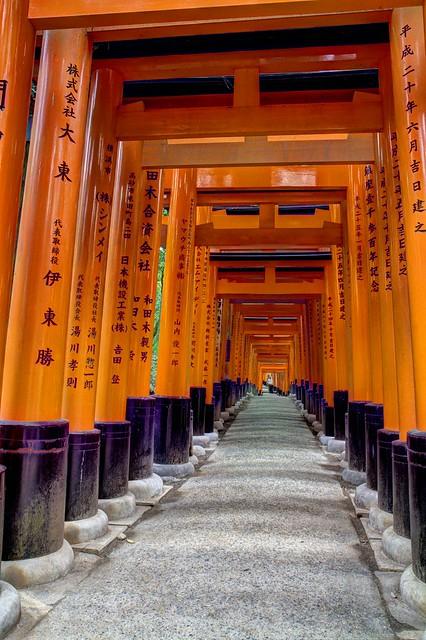 Perspective de Toriis - Sanctuaire Fushimi Inari-Taisha - Kyoto - Japon