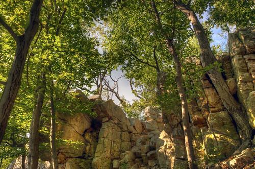 chris mountain 3 tree green rock wall photography photo high woods nikon soft kaskel shot dynamic hiking d picture maryland pic hike trail summit pro urbana sugarloaf 5000 range dickerson hdr frederick matix photomatix d5000