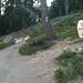 Granite Chief: Kada Falls 2012-09