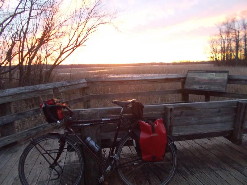 Daybreak and Sequoia - Dyke Marsh 2-4-15