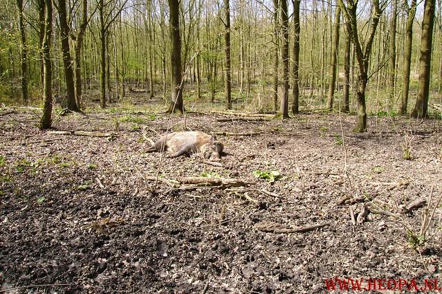 Natuurlijk Flevoland  12-04-2008  40Km (69)