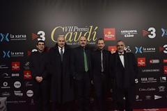 Catifa vermella VII Premis Gaudí (6)