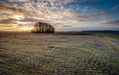 bridge sunrise flickr olympus hampshire oakley omd basingstoke lightroom 2015 m43 mft em5 enfuse battledown lr5 microfourthirds 918mm whitebarrow mzuiko
