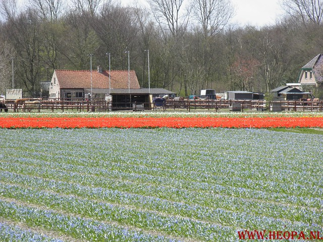 Castricum 15-04-2012 26 Km (71)