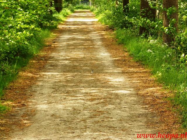 2016-05-21           Scherpenzeel             46 Km  (79)
