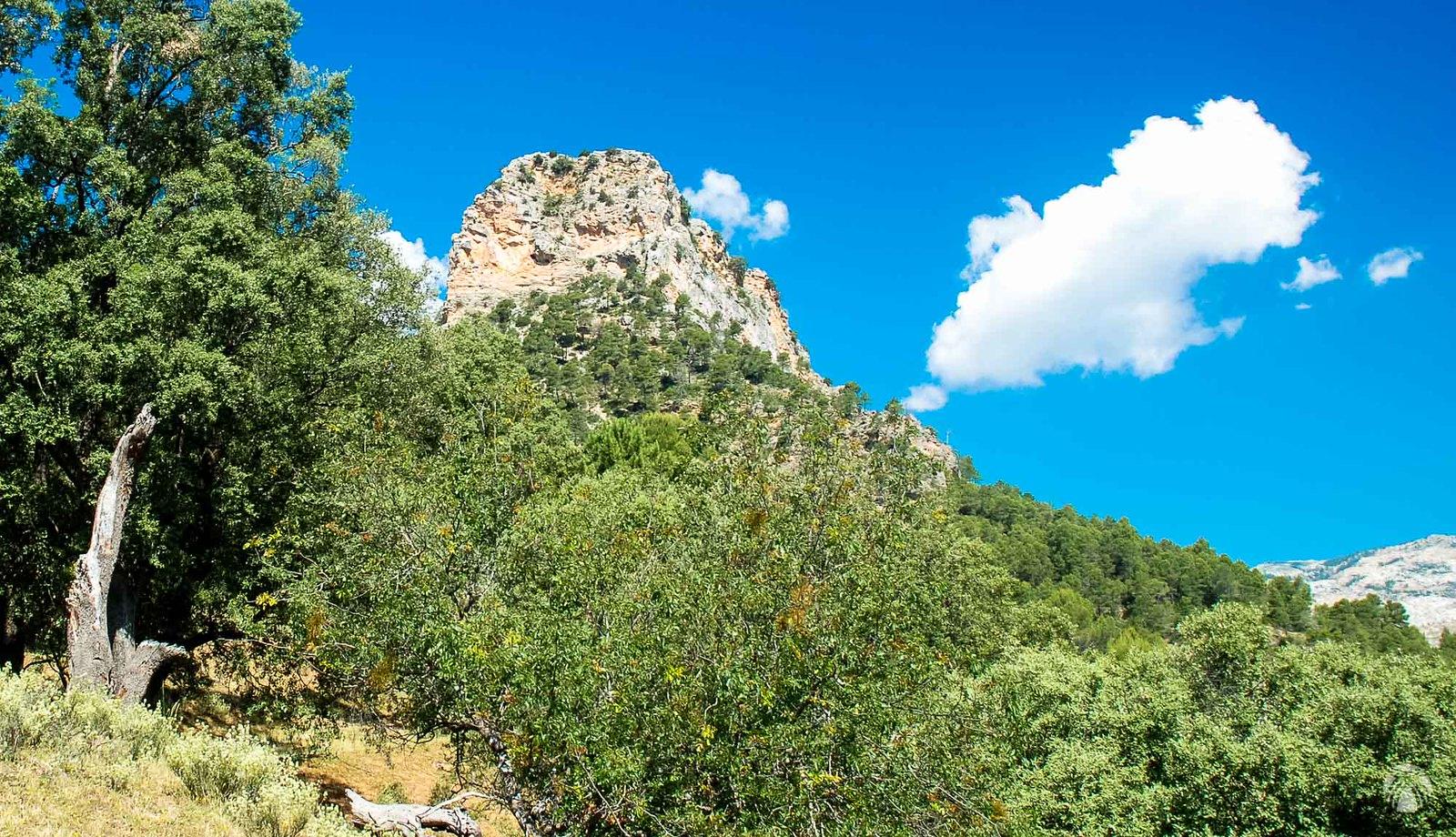 Huertos con olivos y la Piedra del Mulón