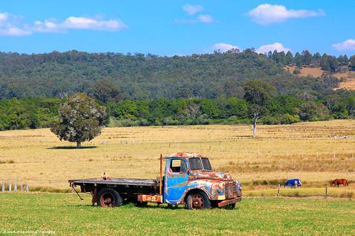 australia greatlakes nsw oldtruck paddock midnorthcoast nabiac abbottsrd dyerscrossing