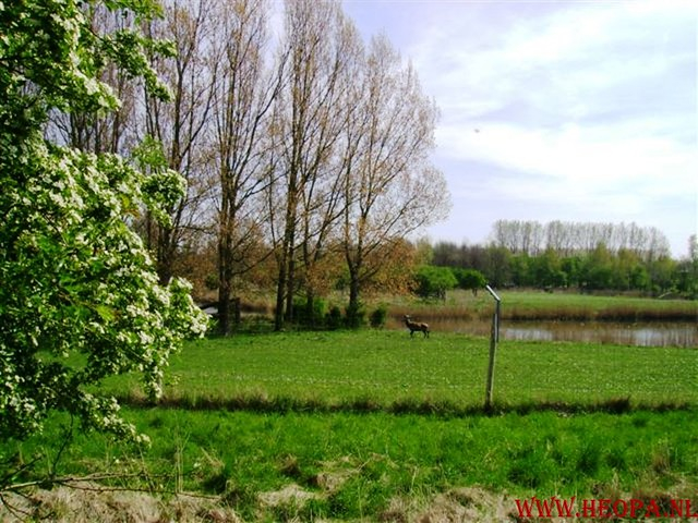 Lelystad   40 km  14-04-2007 (13)