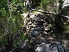 RG du Carciara (branche Paliri) : vestiges des coupes de bois le long du ruisseau (?)