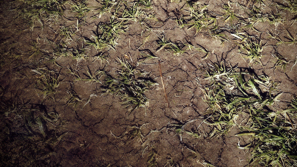 Skyrim Realistic Texture Overhaul - Dragonborn | Wonderful n… | Flickr