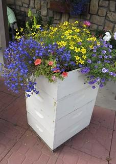 Bee Hive Planter