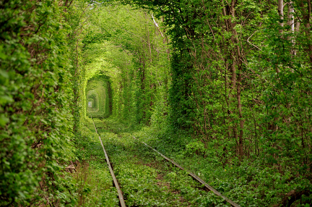 Tunnel of Love (Ukraine) [1024x680]