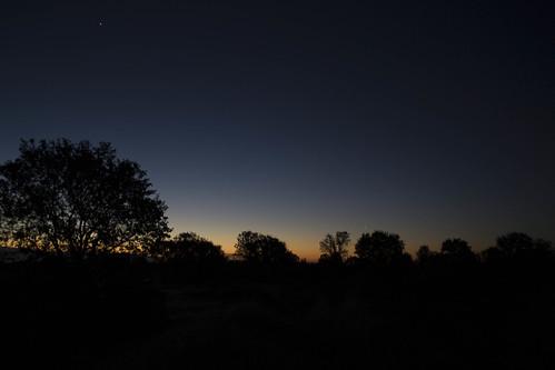 california trees sunrise unitedstates redding lassen