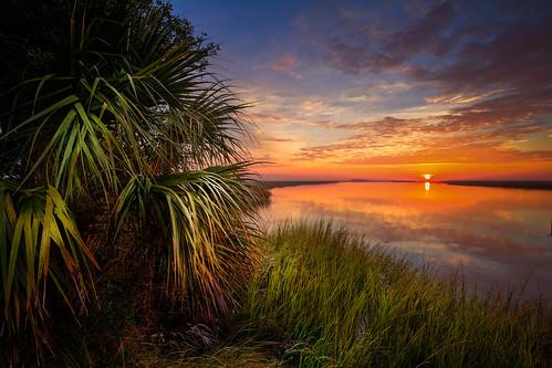 nature sunrise river palms georgia coast coastal marsh thesouth campground hdr saltmarsh lightroom photomatix marshgrass sabalpalmetto bryancounty cabbagepalm savageisland fortmcallisterstatepark redbirdcreek