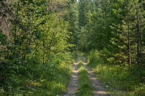 path idaho dirtpath