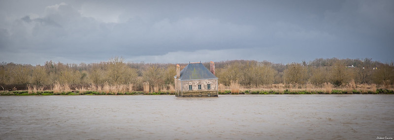La Maison Dans l'Eau - Couëron (44)