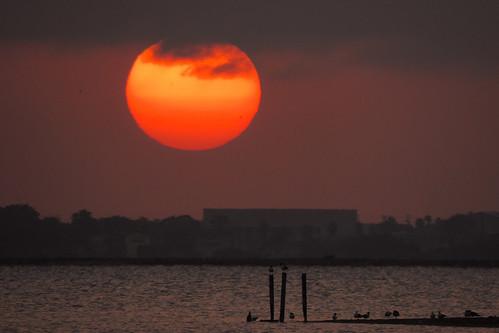 snoopyspier sunset coast gulfofmexico corpuschristi texas usa outdoor sun dnysmphotography