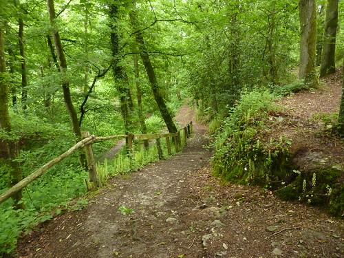 Sentier de randonnée à Saint-Germain-sur-Ille