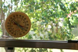 Thermometer | by jenniferworthen