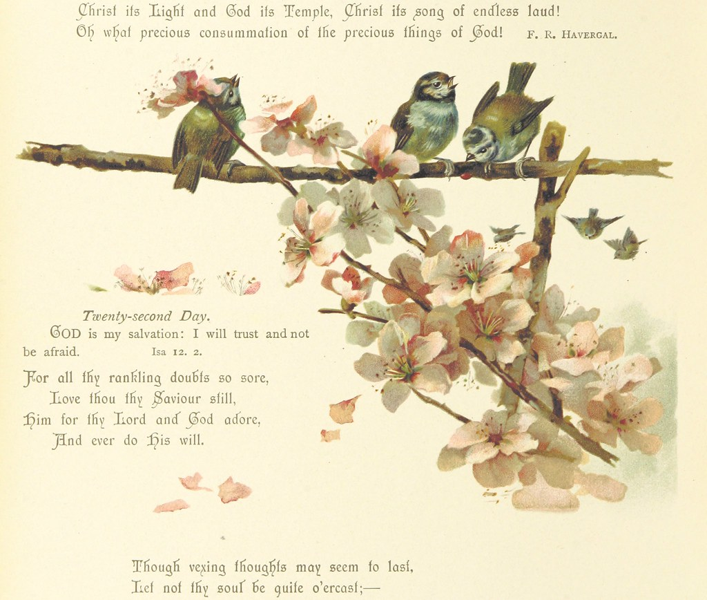 Image taken from page 16 of 'His Loving Kindness  A daily … | Flickr
