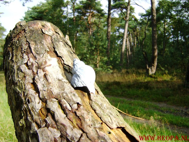 Veluwse Walkery 06-09-2008 40 Km (34)