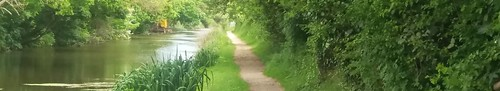 chichester-canal-towpath
