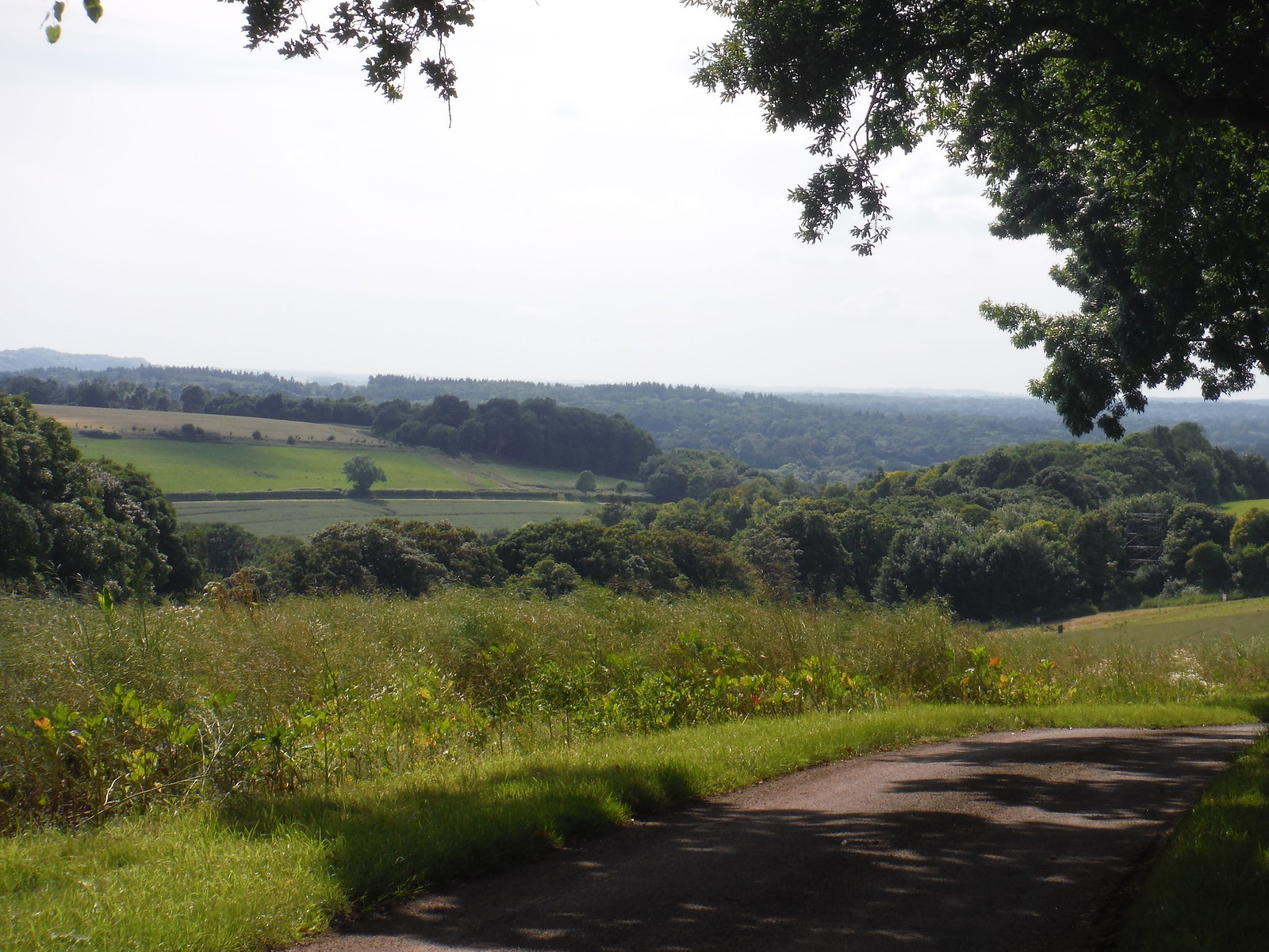 View into Test Valley, from Lower Eldon Farm lane SWC Walk 265 - Dean to Mottisfont and Dunbridge