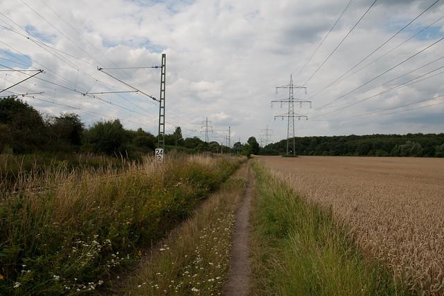 Zwischen Feld und Bahn