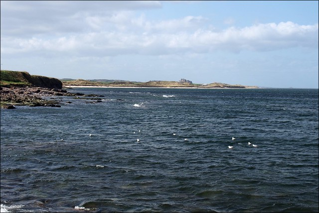 View north from Seahouses
