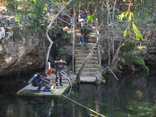 Diving the Cenotes of Mexico | by c&rdunn