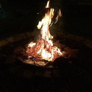 Burn baby burn. One way to get rid of an old Xmas tree. Last bonfire in the Bay Area | by queenkv