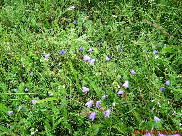 Veluwse Walkery 06-09-2008 40 Km (71)
