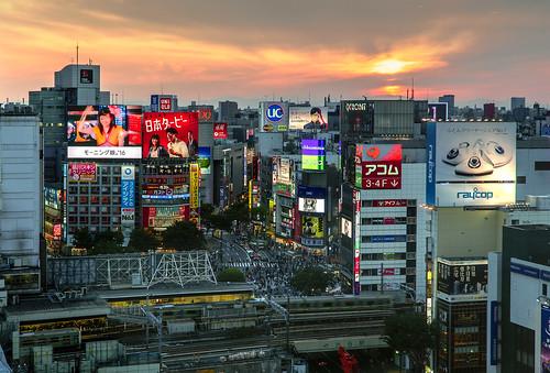 sunset people japan train tokyo neon sony shibuya trains busy trainstation lcdscreen largescreen passingtrain scramblecrossing giantscreen a6000 massivepeople ilcea6000 johnnguyen0297