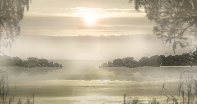 On the fogs