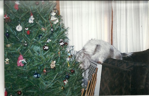 Alf the ornament thief