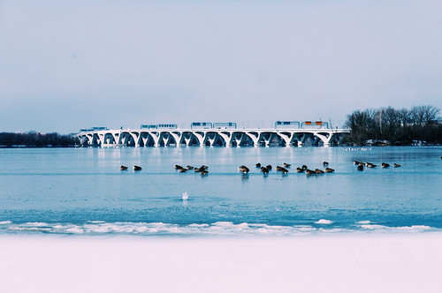 travel winter snow ice water dc md va dcist potomacriver dcmetro nationalharbor flipmode79 polarvortex exposeddc