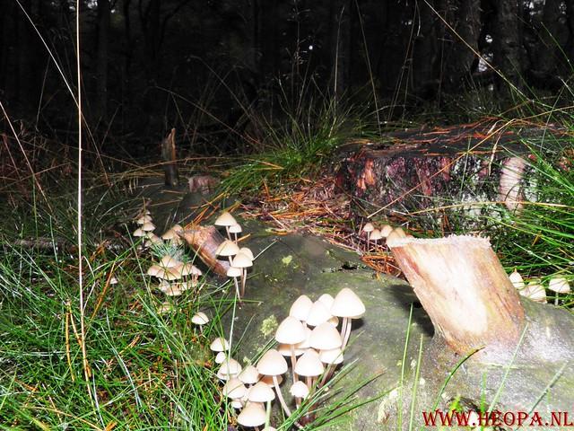 20-10-2012     Wedeblick-   Driebergen        25 Km (72)