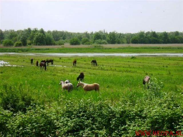 Apenloop 20-5-2007 (26)