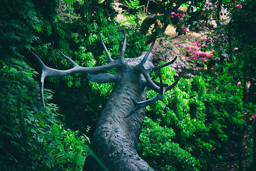 Stag Sculpture (30/05/2016)